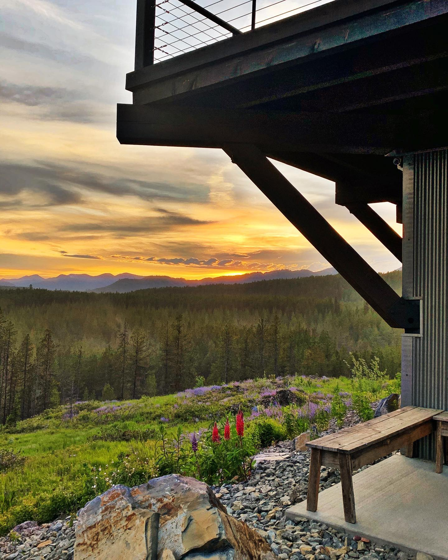 Spring in Montana (the golden glow do to a crazy amount of pollen in the air ) whitefish custom home builder